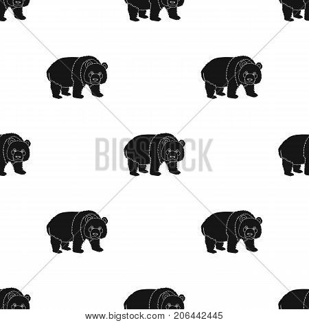 Panda, a bamboo bear. Panda, a rare species of animal single icon in black style vector symbol stock illustration .