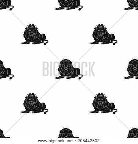 A lion, a wild and ferocious predator. Leo, the king of beasts single icon in black style vector symbol stock illustration .