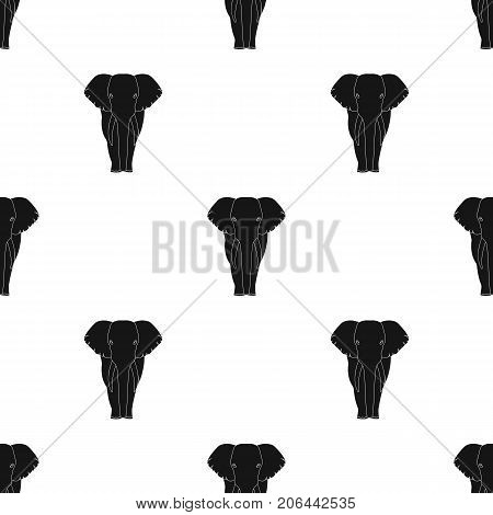 The elephant, the biggest wild animal. African elephant with tusks single icon in black style vector symbol stock illustration .