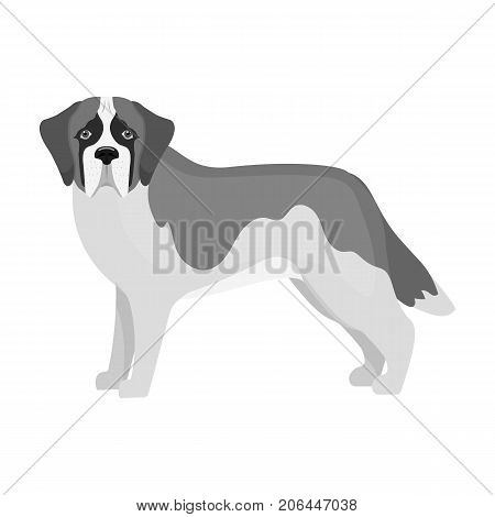 Beagle, single icon in monochrome style.Beagle, vector symbol stock illustration .