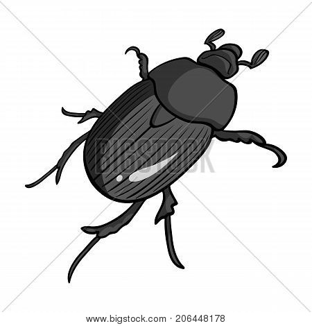 Beetle is a coleopterous insect.Arthropods insect, beetle single icon in monochrome style vector symbol stock isometric illustration .