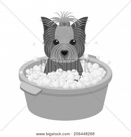 Bathing pet puppy in a bowl. dog, Pet, dog care single icon in monochromt style vector symbol stock illustration .
