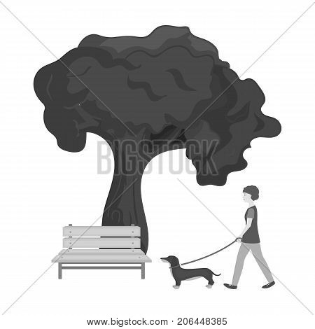 Tree and bench, woman walks a pet in the park. Pet, Dog care single icon in monochromt style vector symbol stock illustration .
