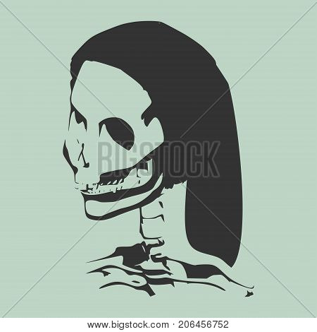 Anatomic Skull. Detailed illustration of human skull.