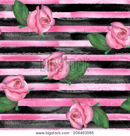 Horizontal Striped Roses Texture