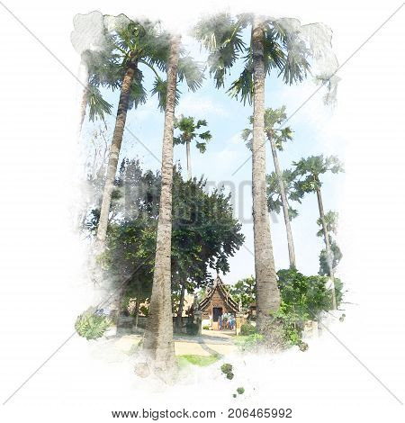 Sugar palm with wood sanctuary in the temple (public place) and blue sky on background. Watercolor painting (retouch).