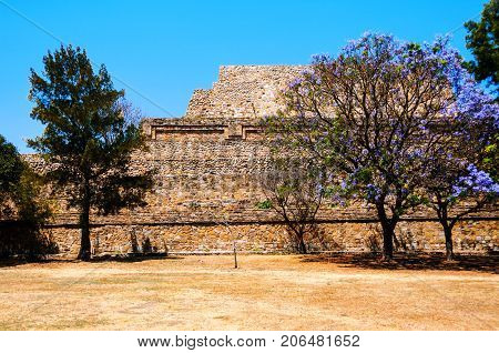 Oaxaca, Mexico. Monte Alban Ruins in Oaxaca, Mexico with trees and clear blue sky