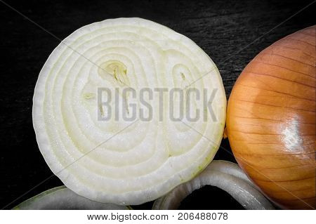 Cross Section of a Peeled Onion Reveals Layers