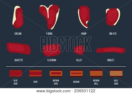 Beef steak types vector simplified with degree of steak doneness. Flat style.