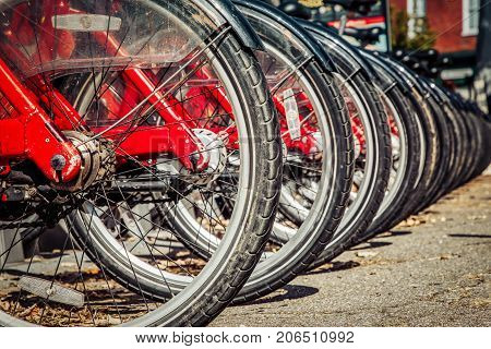 A row of bikes ready to use at a rental stand in northern Virginia.