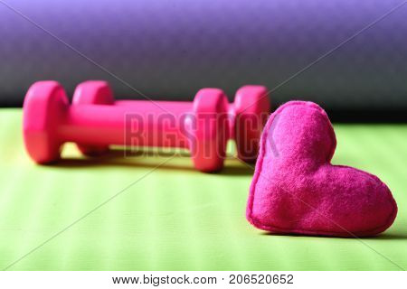Dumbbells In Pink Color Next To Soft Toy Heart