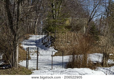 Forest house or hut in small yard on winter time in Vitosha mountain, Bulgaria