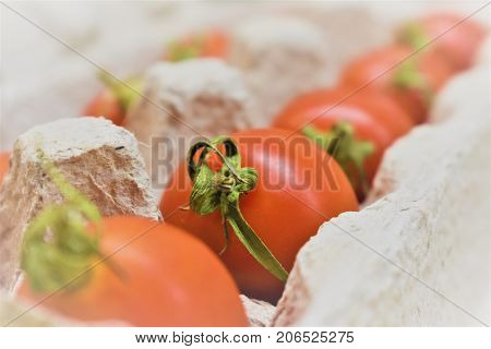 Fresh tomatoes in a package. Delicious red tomatoes. A pile of tomatoes. Summer tray market agriculture farm full of organic tomatoes.