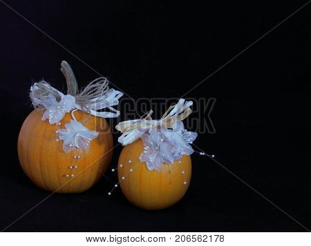 A pair of pumpkins decorated with white flowers and beads with brown and white paper ribbon for a country style wedding against a black background with ample copy space.