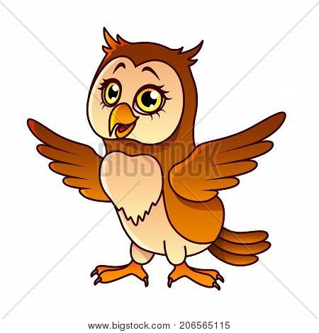 Cartoon owl isolated on white vector illustration