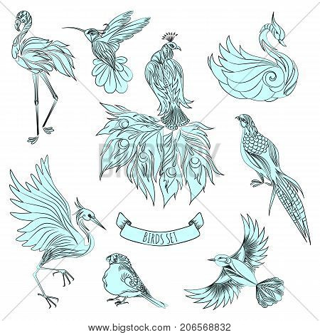 Set of beautiful decorative hand drawn birds vector illustration