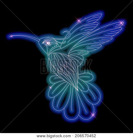 Hummingbird neon shiny bird vector illustration design