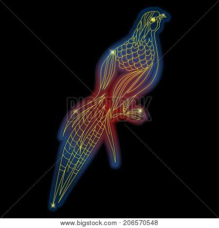 Pheasant bird neon shiny vector illustration design