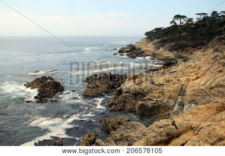 Landscape of Pebble beach on 17-Mile drive in USA