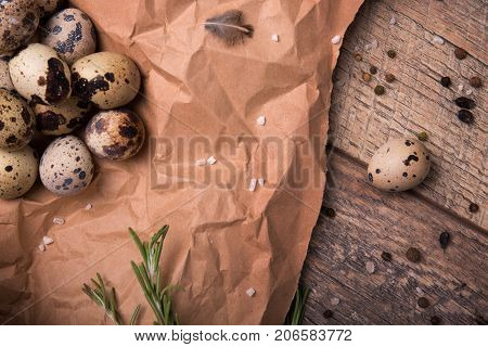 Top view of fresh speckled quail eggs, fragrant green twigs of rosemary, dried up bay leaves, a little quail feather on a piece of grocery paper on a light wooden background.