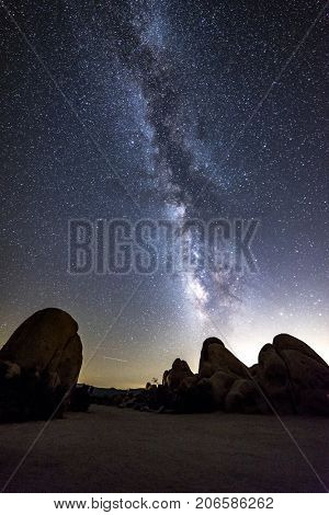 The night sky peppered with thousands of stars and the beautiful Milky Way, which hangs vertically over a Joshua Tree in Joshua Tree National Park.