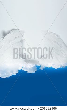 Angel wings in the sky. Angels feather wing on sky blue background