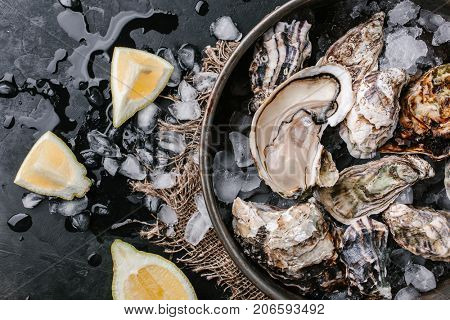 Raw open oyster with ice and lemon on a dark background. Top view.