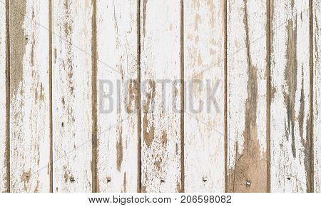 wooden board white old style abstract background objects for furniture.wooden panels is then used Vertical