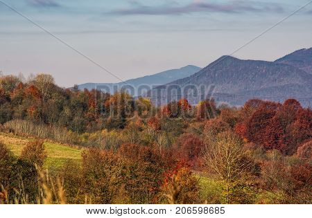 Ridge With Peaks Above Hillside With Forest