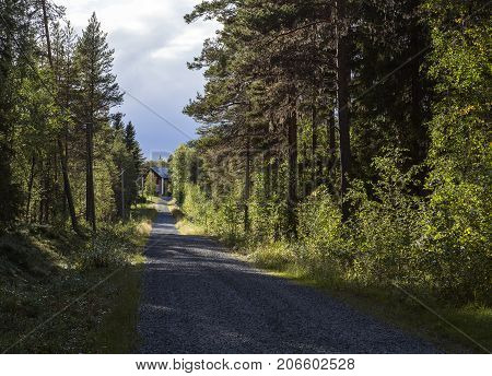 LAPLAND, SWEDEN ON SEPTEMBER 01. View of a gravel road, house, home and forest on September 01, 2017 in Lapland, Sweden. Editorial use.