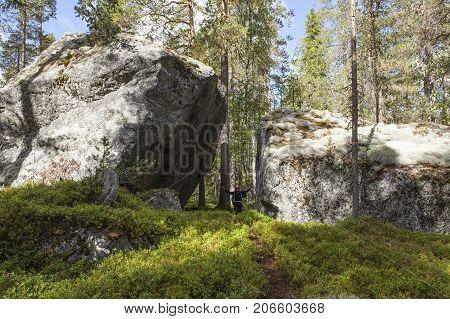 BJORNLANDET, SWEDEN ON SEPTEMBER 02. View of huge boulders along the trail on September 02, 2017 in Bjornlandet National Park, Sweden. Unidentified person on the trail. Editorial use.