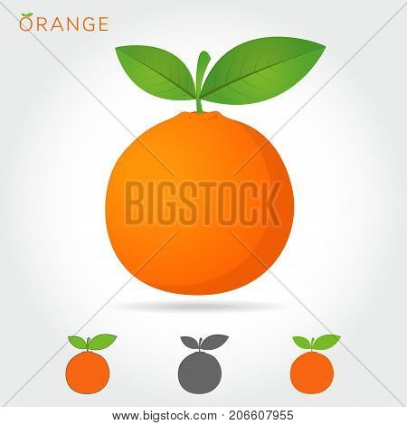 orange icon. orange icon vector. orange icon simple. orange icon app. orange icon web. orange icon logo.orange icon sign. orange icon ui. orange icon flat. orange icon eps. orange icon art