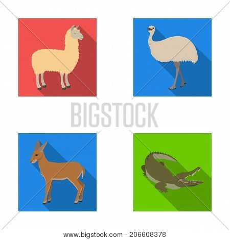 lama, ostrich emu, young antelope, animal crocodile. Wild animal, bird, reptile set collection icons in flat style vector symbol stock illustration .