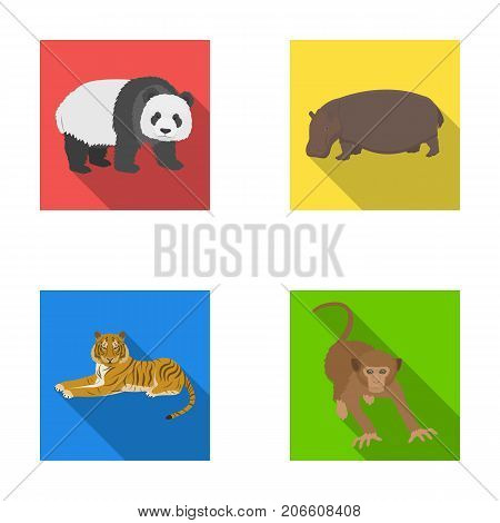 Bamboo bear, hippopotamus, wild animal tiger, monkey . Wild animal set collection icons in flat style vector symbol stock illustration .