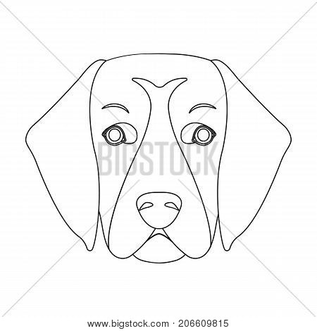 A dog breed, a golden retriever.Muzzle of the Golden Retriever single icon in outline style vector symbol stock illustration .