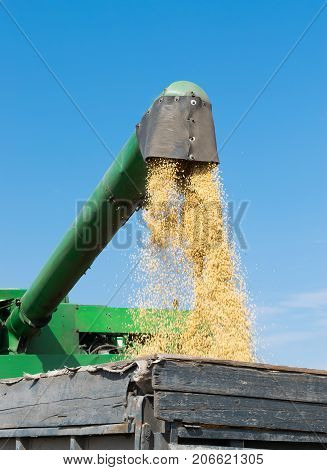 Combine harvester unloading the soybeans into the truck
