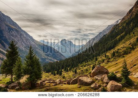 Kyrgyzstan. Gorge Barskoon. Landscape with a stone in the foreground.