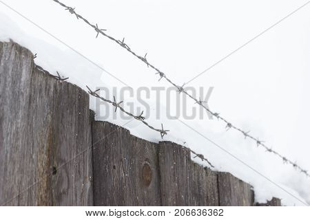 Barbed Wire On Dark Fence.