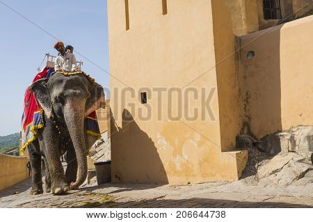 Jaipur, India - September 18, 2017: Unidentified Men Ride Decorated Elephants In Jaleb Chowk In Ambe