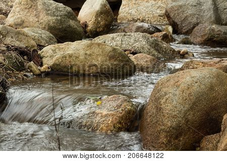 Forest stream among stones. Clean cold water stream in mountains