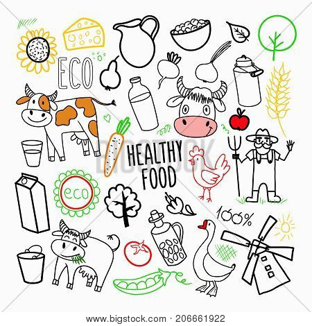 Eco Products Organic Food Hand Drawn Doodle. Freehand Healthy Eating Elements. Vector illustration