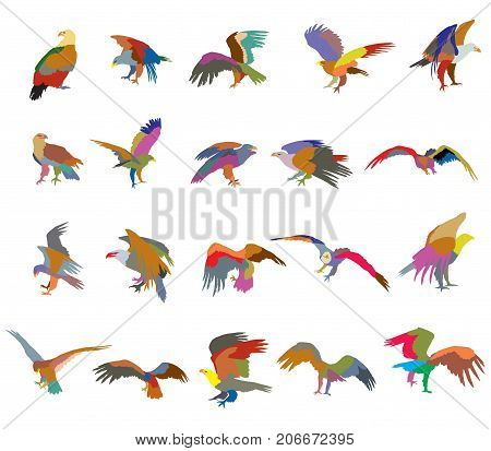 Set of vector colorful cut out flying and sitting silhouettes of american eagle (white-tailed eagle bald eagle) on white background