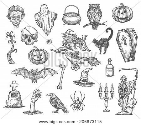 Halloween monsters and symbols vector sketch icons of pumpkin lantern, zombie hand or skeleton skull and death, coffin and tombstone on grave, witch broom and Halloween potion cauldron or black cat