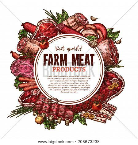 Fresh farm meat poster sketch for butcher shop or butchery market. Vector beefsteak loin, pork tenderloin or mutton ribs and veal brisket filet or schnitzel, turkey and chicken or beef hind quarter