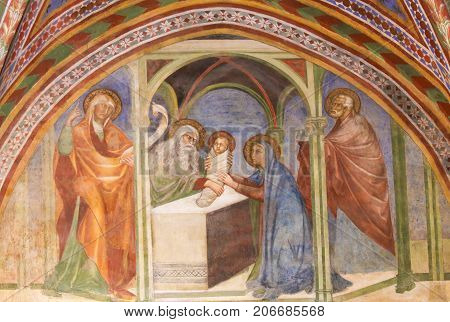 Fresco In San Gimignano - The Presentation At The Temple
