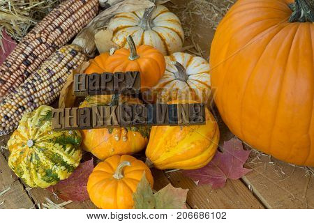 Colorful pumpkins gourds and corn on a wooden surface with Happy Thanksgiving text