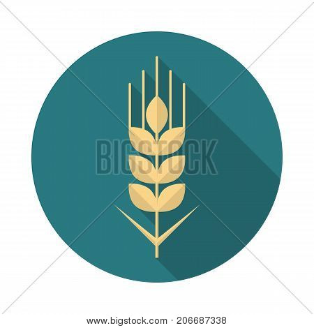 Wheat grain circle icon with long shadow. Flat design style. Wheat grain simple silhouette. Modern minimalist round icon in stylish colors. Web site page and mobile app design vector element.