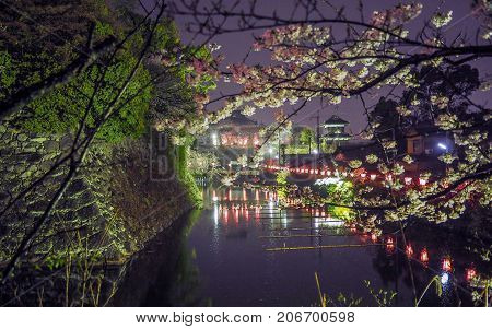 Japanese Castle And Moat Night Shot