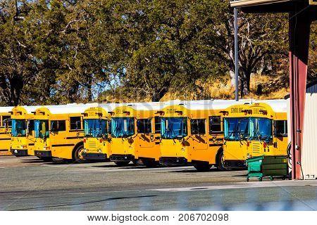 Row Of Yellow School Buses At Maintenance Yard