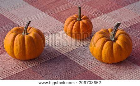 Three small pumpkins together on a plaid cloth